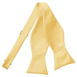 Pale Yellow Satin Self Tie Thistle Bow Tie