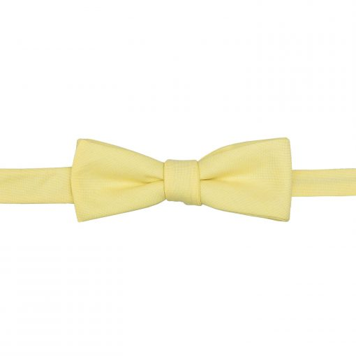 Light Yellow Chambray Cotton Self Tie Batwing Bow Tie