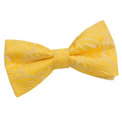 Gold Paisley Pre-Tied Thistle Bow Tie
