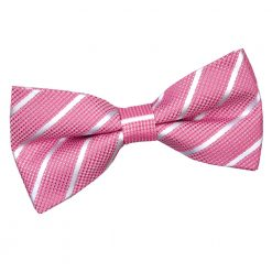 Hot Pink & White Single Stripe Pre-Tied Thistle Bow Tie