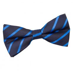 Navy & Mid Blue Single Stripe Pre-Tied Thistle Bow Tie