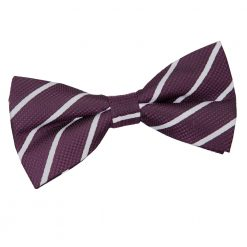 Purple & Silver Single Stripe Pre-Tied Thistle Bow Tie