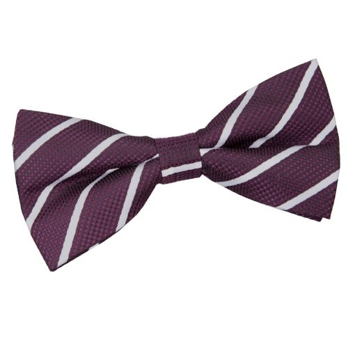 Purple & Silver Single Stripe Pre-Tied Thistle Bow Tie