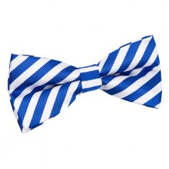 White & Royal Blue Thin Stripe Pre-Tied Thistle Bow Tie