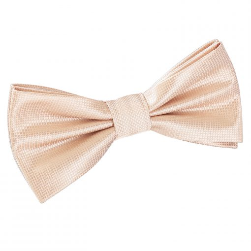 Champagne Solid Check Pre-Tied Thistle Bow Tie